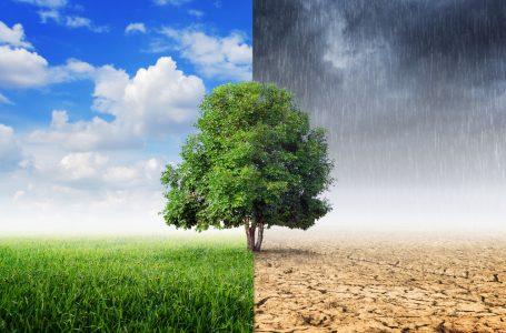 Che rapporto c'è tra meteo ed economia? Ecco ciò che forse non sai